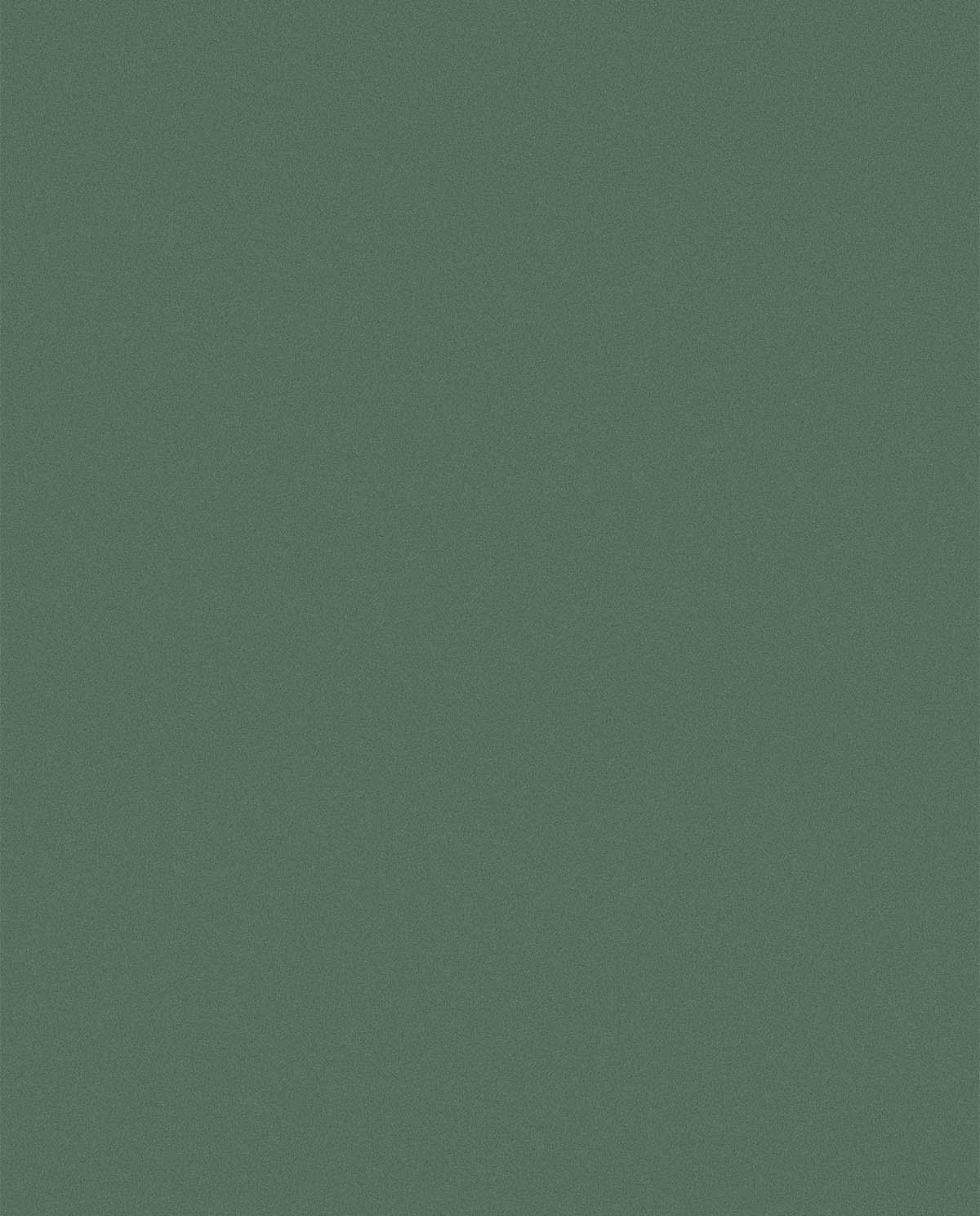 24. Labrador Green kopiëren